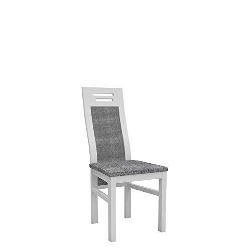 Mirjan24  OUTLET ! Stühl K65 aus Buchenholz, Farbauswahl, Massivholz Esszimmerstuhl Essstuhl Küchenstuhl, Wohnzimmerstuhl